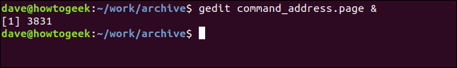 """A """"gedit command_address.page &"""" command in a terminal window."""