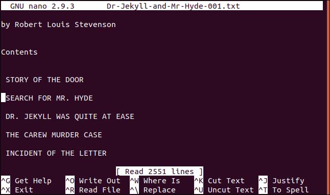 file loaded in the nano editor