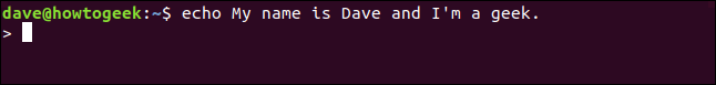 echo My name is Dave and I'm a geek. in a terminal window