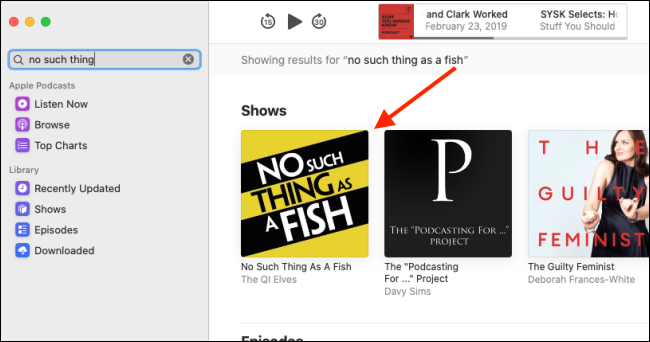 Click the podcast in the search results.