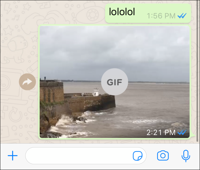 A Loop Effect Live Photo sent as a GIF.
