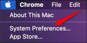 "Click ""System Preferences."""