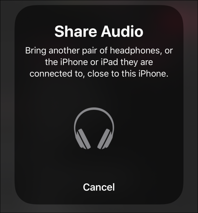 Share Audio screen