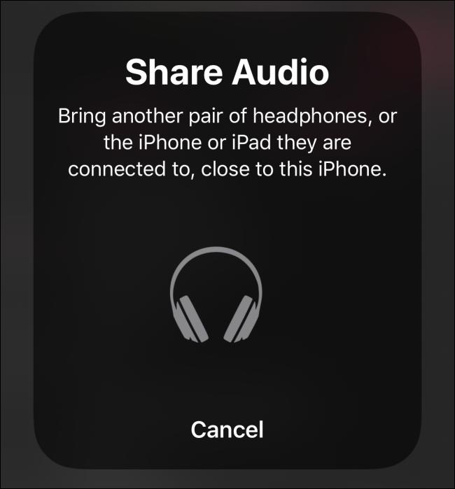 Share Audio screen