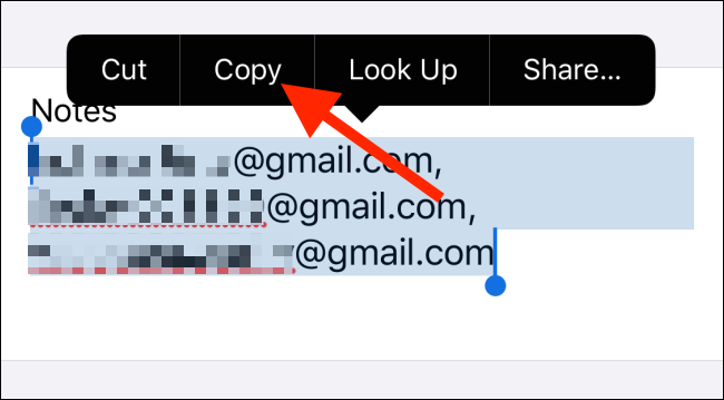 Tap on Copy to copy all email addresses