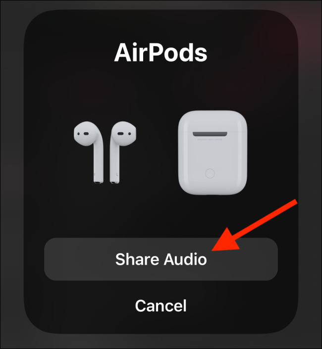 Tap on Share Audio