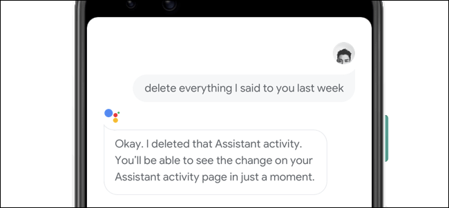 Deleting what you said to Google Assistant via voice.