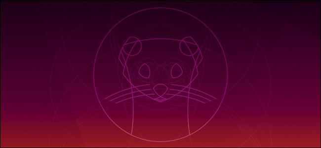 Ubuntu 19.10 Eoan Ermine's default desktop wallpaper background.