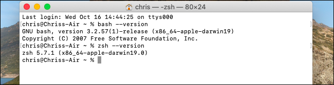 Viewing the versions of Bash and Zsh on macOS Catalina.