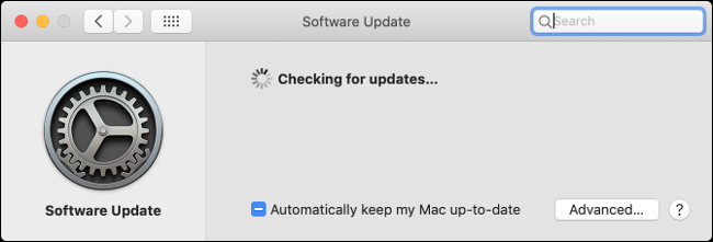 """The """"Software Update"""" pane in macOS."""