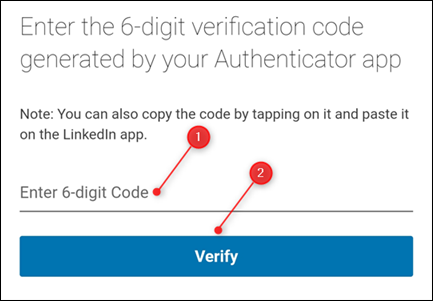 The entry field for the verification code.