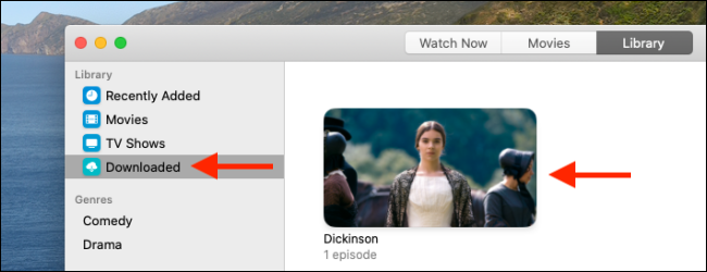 Go to Downloaded section and select the show