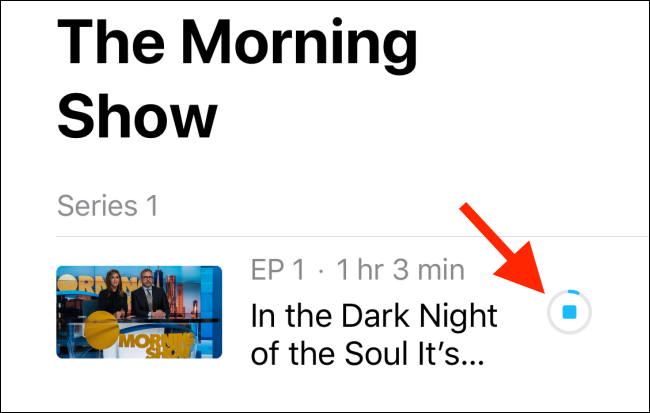 Tap on the pause button to stop downloading the show