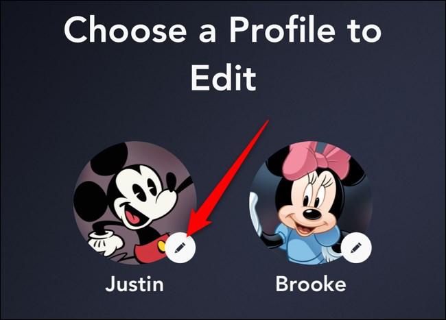 Disney+ App Select a Profile