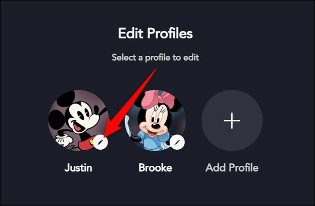 Disney+ on the Web Select Profile