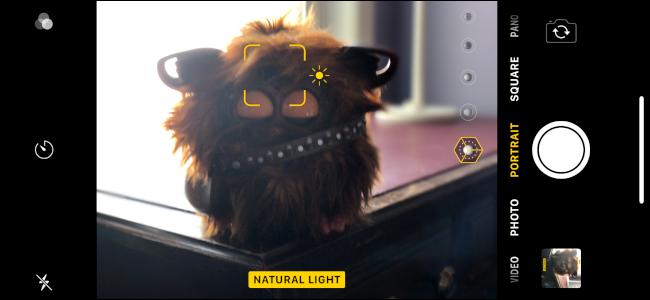 iPhone Portrait Lighting