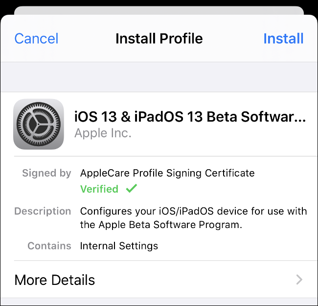 "The ""Install Profile"" option for iOS 13 and iPadOS 13 Beta Software."