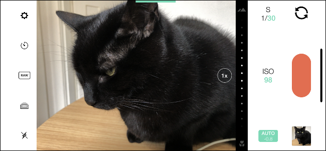 An image of a black cat in the Manual app for iPhone.