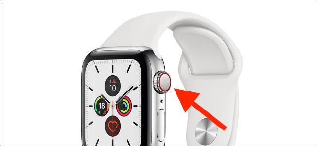 Apple Watch Cellular red dot or ring