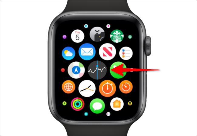 Apple Watch Stock App