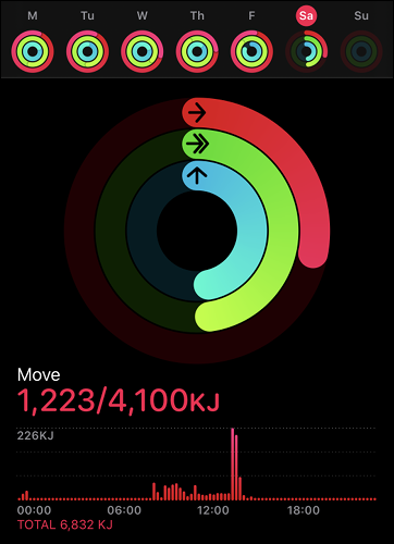 A Move Goal in the Apple Activity App.