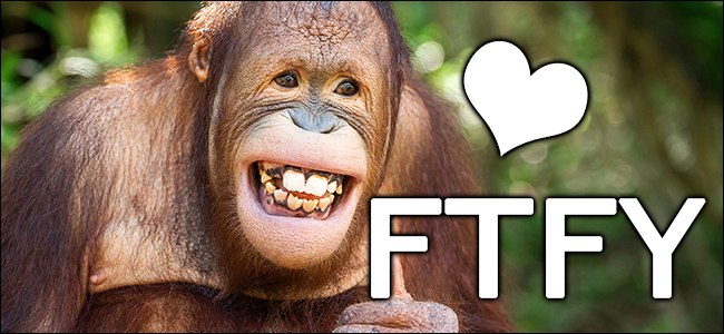 "A cute monkey with the phrase ""FTFY"" and heart floating next to his head."