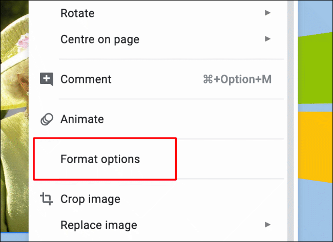 To access the image formatting menu, right-click an image and click Format Options, or click Format > Format Options from the menu bar