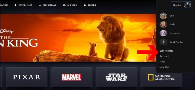 Disney + Edit profiles