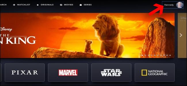 Disney + homepage