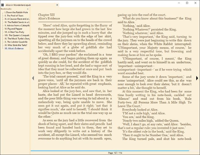 Reading an eBook in Sumatra PDF for Windows.
