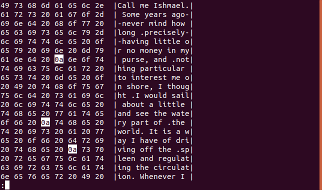 Output from hexdump in less in a terminal window with newline characters highlighted
