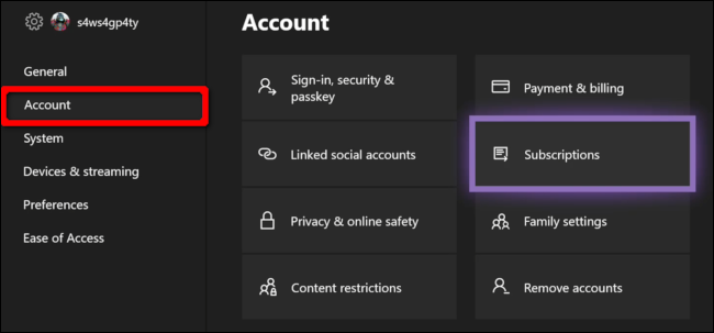 Xbox Account Access Subscriptions