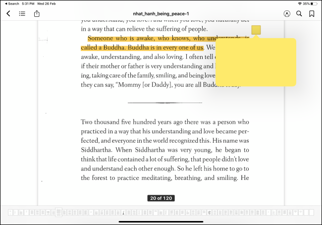 Apple Books app showing highlight and notes feature