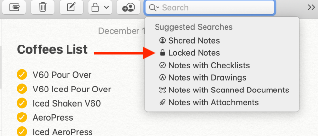 Choose the Locked Notes option from Search