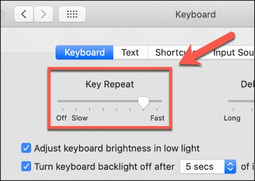 Mueva el control deslizante de repetición de teclas hacia arriba y hacia abajo para afectar la velocidad de repetición del teclado de su Mac