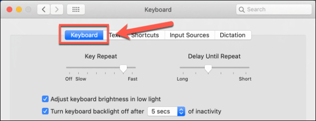 The Keyboard tab in the Keyboard options in macOS System Preferences