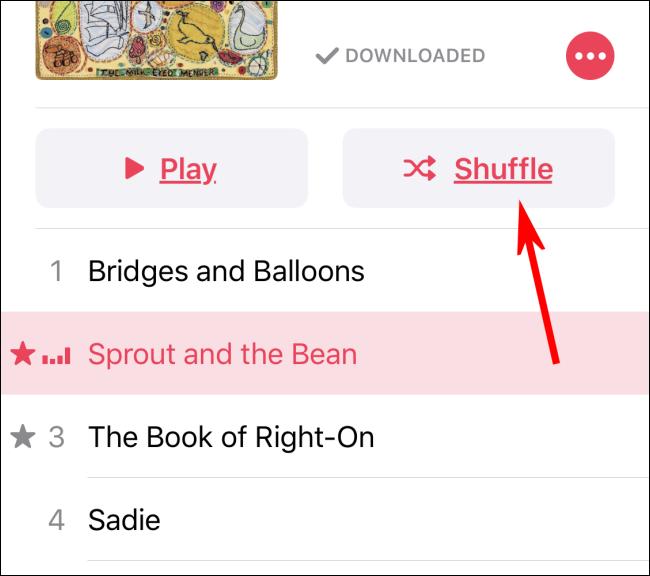 Turning on Shuffle in Music app using the Shuffle button