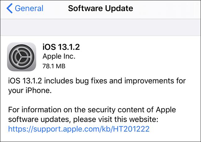 Captura de pantalla de la actualización de iOS a 13.1.2