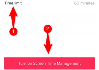 "Tap ""Time Limit,"" choose a time limit, and then tap ""Turn on Screen Time Management."""
