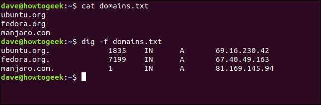 "The ""cat domains.txt"" and ""dig -f domains.txt"" commands in a terminal window."