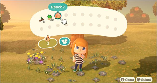 Animal Crossing New Horizons Fruit