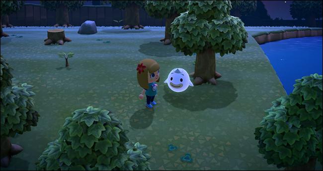 Animal Crossing New Horizons Whisp