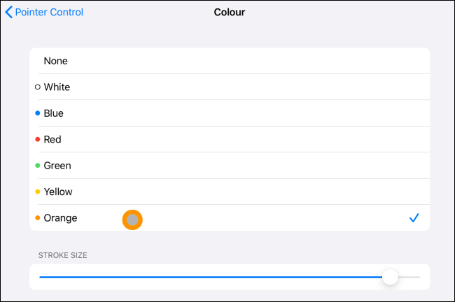 Color and stroke option for cursor on iPad