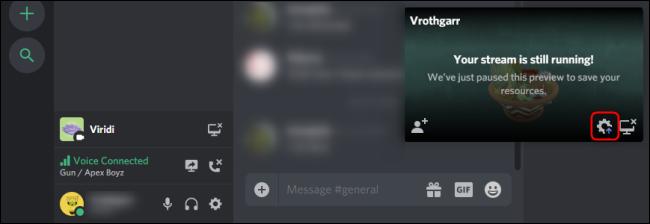 Discord Go Live Interface