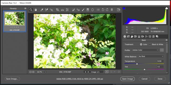 The Photoshop Camera Raw options menu