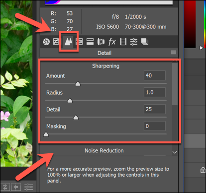 The Sharpening options for an image in the Camera Raw options in Photoshop