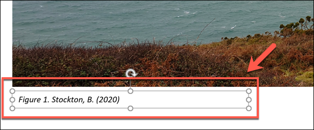 An inserted citation in PowerPoint
