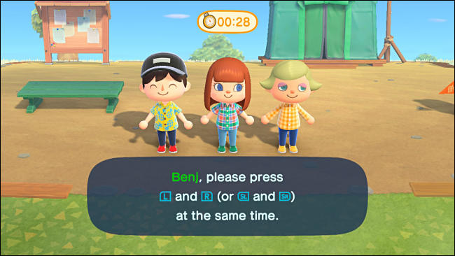 Assigning Controllers for Party Play in Animal Crossing: New Horizons