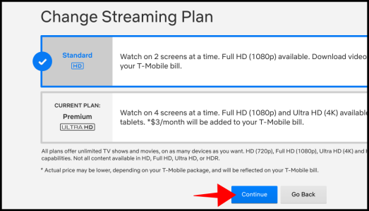 Netflix Plan Options
