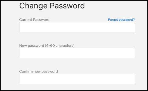 Netflix Set New Password